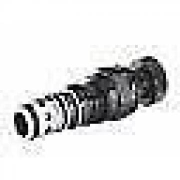 Bosch Rexroth Hydraulics R900486196 DB 6 K2-4X/200YV